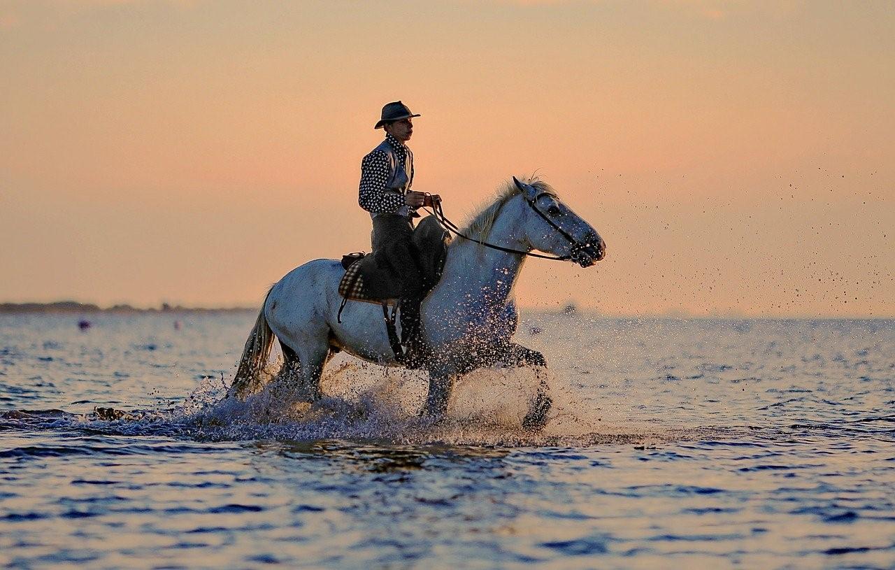 """""""ขี่ม้า"""" กิจกรรมคลายเครียดและกีฬาฝึกสมาธิ"""